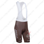 2013 Team AG2R LA MONDIALE Cycling Bib Trousers