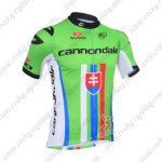 2013 Team CANNONDALE Slovakia Champion Cycling Jersey