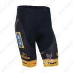 2013 Team MTN Cycle Shorts