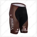 2015 Team AG2R LA MONDIALE Cycling Shorts
