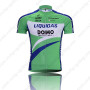 2010 LIQUIGAS Cycling Jersey Green Blue