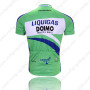 2010 LIQUIGAS Riding Jersey Green Blue