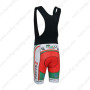 2013 Team FOCUS Biking Bib Shorts Green Red