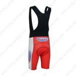 2013 Team GIANT Biking Bib Shorts Red