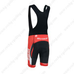 2013 Team bwin RedBull Bicycle Bib Shorts Red