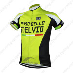 2015 Team STELVIO Cycling Jersey Green
