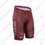 2016 Team AG2R LA MONDIALE FOCUS OW Cycling Shorts