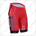 2016 Team BARDIANI CSF Cycling Shorts Bottoms Red