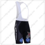 2016 Team RALEIGH Gac Biking Bib Shorts Bottoms