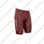 2017 Team AG2R LA MONDIALE Cycle Shorts Bottoms