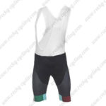 2017 Team BIANCHI Cycling Bib Shorts Bottoms Black Green Red