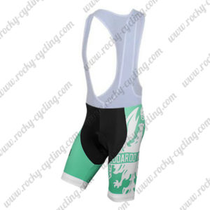 2015 Team BIANCHI Cycling Bib Shorts Bottoms Green