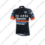 2015 Team DE ROSA Santini Cycling Jersey