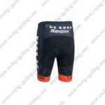 2015 Team DE ROSA Santini Cycling Shorts