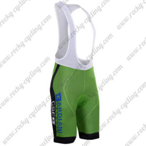 2017 Team BARDIANI CSF Cycling Bib Shorts Bottoms Green Black