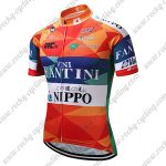 2018 Team VINI FANTINI NIPPO Cycling Jersey Shirt Colorful