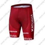 2019 Team KATUSHA Alpecin Cycling Wear Riding Shorts Bottoms Red